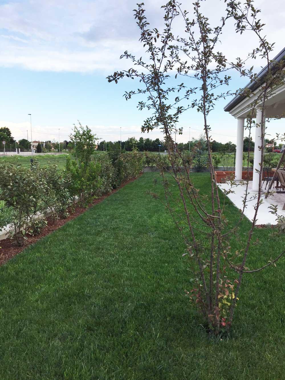 Progettazione giardino privato verona