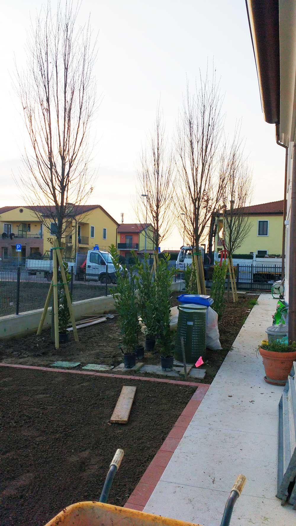 Realizzazione giardino verona