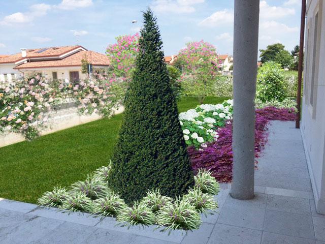 Render con fotoinserimento progettazione giardini