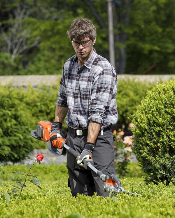 Vivaio vicenza consigli di giardinaggio